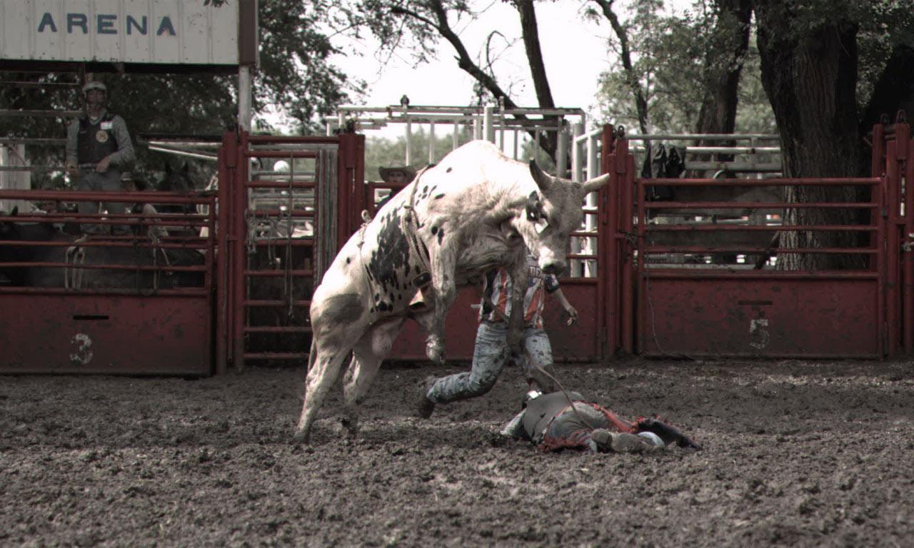 "National Geographic: Dangerous Encounters, ""Raging Bulls"""
